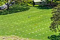 National Memorial Cemetery of the Pacific 6.jpg