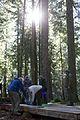 National Public Lands Day 2014 at Mount Rainier National Park (022), Longmire.jpg