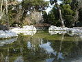 National park of Athens2.JPG