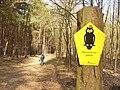 Naturschutzgebiet Koenigswald (Koenigswald Nature Reserve) - geo.hlipp.de - 34713.jpg