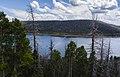 Navajo Lake (219856203).jpeg