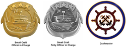 Navy OIC POIC Insignia