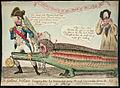 Nelson crocodiles.jpg