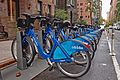 New York City Citibikes.jpg