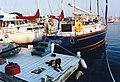 Newport,Rhode Island.USA. - panoramio (9).jpg