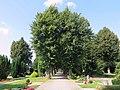 Niederfeld-Friedhof Allee.JPG