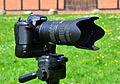 Nikon D7100 & AF-S Nikkor 70-200mm 1-2,8G ED VR II 01.jpg