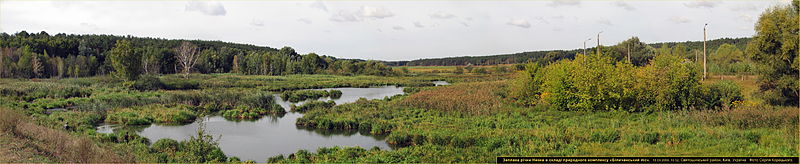 Nivka River and Bilychee-Wood in Kyiv.jpg