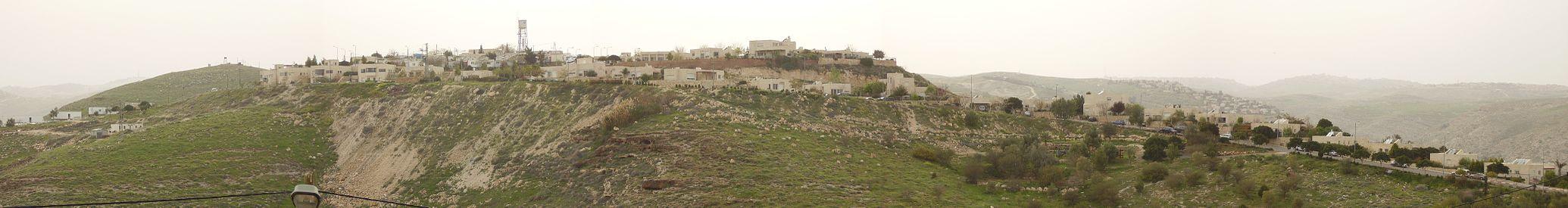 מבט ממזרח על היישוב; ברקע בצד ימין – עלמון (ענתות)