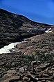 Norwegen 1998 (579) Weg zum Svartisen (49881047378).jpg