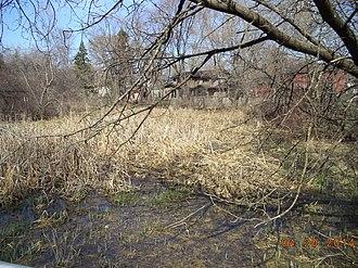 Schaumburg, Illinois - Oak Hollow Conservation area of Schaumburg, Illinois
