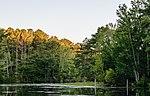 Oceana Pond 13 LR.jpg