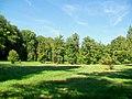 Ognon (60), parc d'Ognon, pelouse au nord du miroir d'eau.jpg