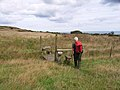 On the path from Mynydd Bodafon to Brynrefail - geograph.org.uk - 226629.jpg
