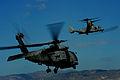 Operation Unified Response DVIDS244965.jpg