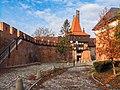 Opole 0011.2 - mury przy Katedrze Świętego Krzyża.jpg