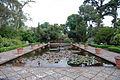 Ornamental pond (2542081284).jpg