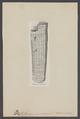 Orthoceras annulatum - - Print - Iconographia Zoologica - Special Collections University of Amsterdam - UBAINV0274 005 11 0002.tif