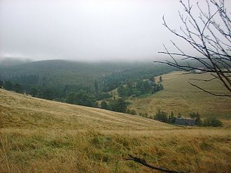 Ore Mountains - Source region of the Freiberger Mulde near Moldau (Czechia) in the Ore Mountains