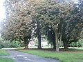 Over End, Washed Out - geograph.org.uk - 917117.jpg