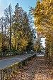 Pörtschach Hauptstraße unterhalb der Villa Hoyos Ost-Ansicht 10112019 7439.jpg