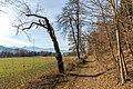 Pörtschach Winklern Quellweg Wanderweg 09012020 7994.jpg