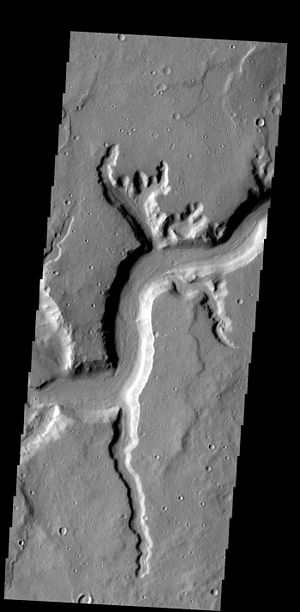 Rille - Mamers Valles rille on Mars.