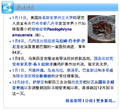 Paedophryne amauensis In the news - Chinese.png