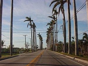 Pahokee, Florida - Royal Palms line the main thoroughfare through downtown Pahokee.