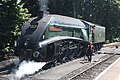 Paignton - 60009 being serviced for the Torbay Express 2018.JPG