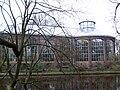 Palmen- en varenkas Hortus Botanicus Amsterdam.jpg