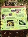 Panneau Vigne - EcoParc des Carrieres Fontenay sous Bois 1.JPG