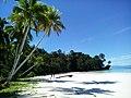 Pantai Wayob Fakfak.jpg