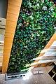 Papadakis living wall.jpg