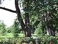 Parc Bordelais, Bordeaux, Aquitaine, France - panoramio (4).jpg