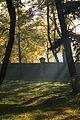 Park pałacowy jesienią 05.JPG