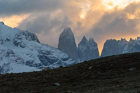 Parque Nacional Torres del Paine - XII Region de Magallanes y La Antartica Chilena - Puma Concolor Atardecer.jpg