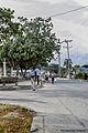 Parque del Jamal visto desde el puente.jpg