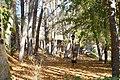 Parque en otoño - panoramio.jpg