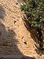 Particolare chiesa Assunta di Pompeiana.jpg