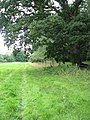 Path along a stock fence - geograph.org.uk - 1405693.jpg