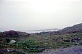 Paysages sur la route Fv341 en direction d' Hamningberg (3).jpg