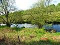 Peaceful River at Betws Garmon - panoramio.jpg