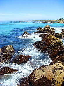 The California Coastline At Bird Rock Pebble Beach