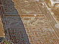 Peltae in Tzafririm Mosaic, Israel (2) (5381448921).jpg