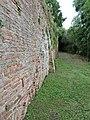 Percorso sentieristico sotto le Mura Medievali Ovest, 6.JPG