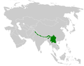 Phylloscopus maculipennis distribution map.png