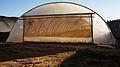 PikiWiki Israel 40244 Agriculture in Israel.jpg