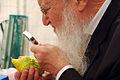 PikiWiki Israel 40522 sukkot.jpg