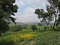 PikiWiki Israel 51947 galilee view.jpg
